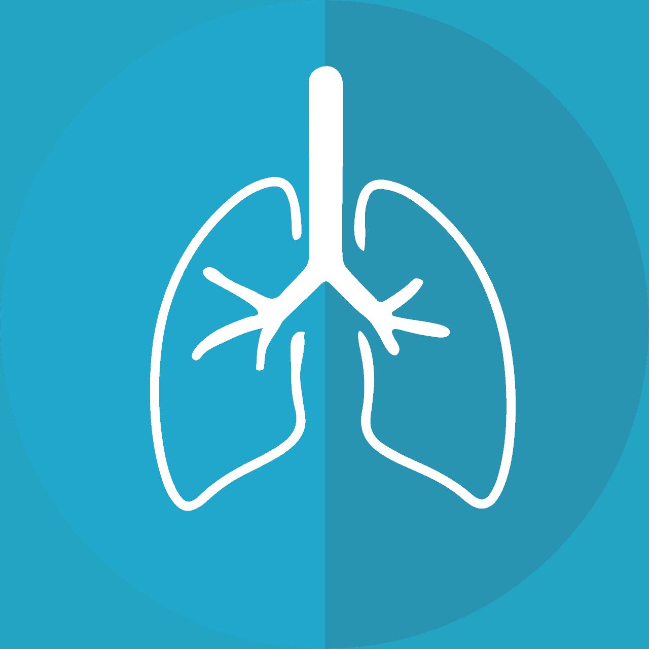 bronchitis vs pneumonia lungs icon