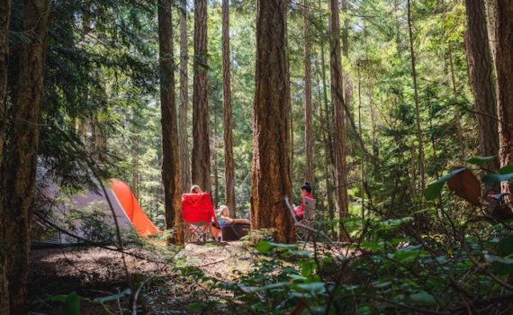 family camping in forest knows first aid for insect bites